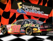Série NASCAR Canadian Tire
